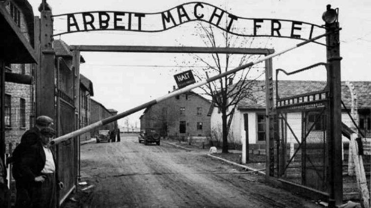 perché hitler uccideva gli ebrei