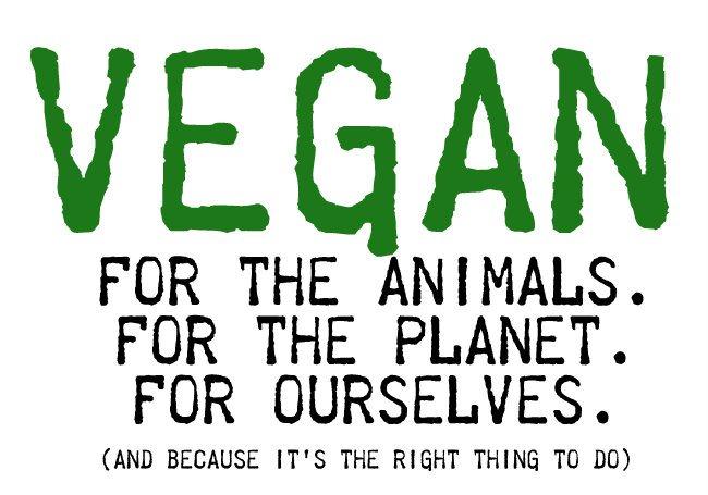 perché essere vegano